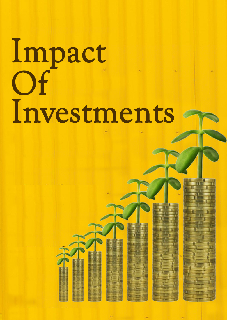 impact of investment